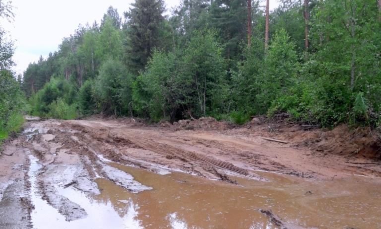 Вот так выглядела дорога, которую решил спасти молодой глава района.